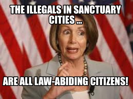 Image result for funny memes about sanctuary cities