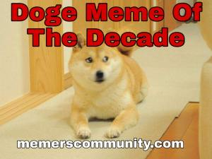 Dog Memes Templates, Make Your Own Dog Meme, Dog Meme Of 2020