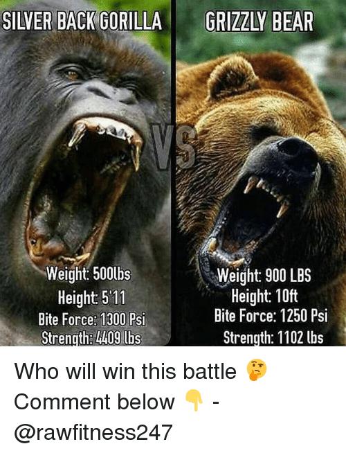 Black Memes Funny Friday