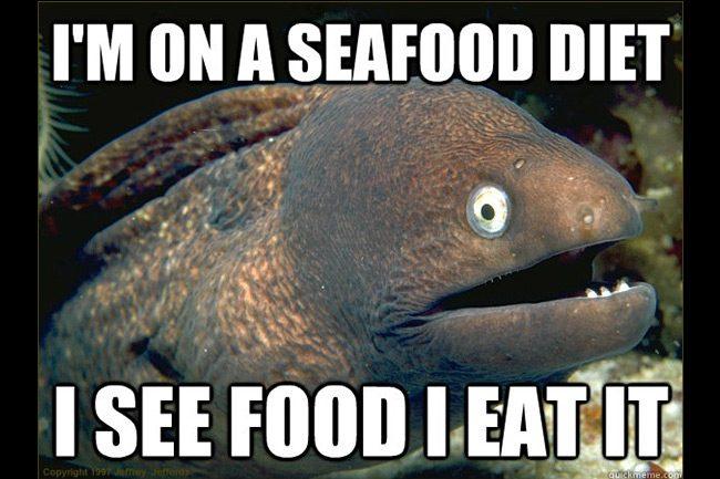 Funny Fish Memes