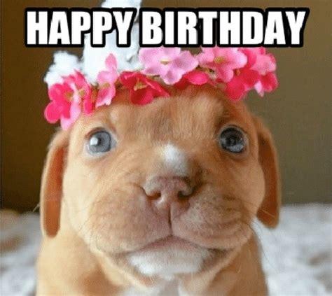 Puppy Birthday Memes
