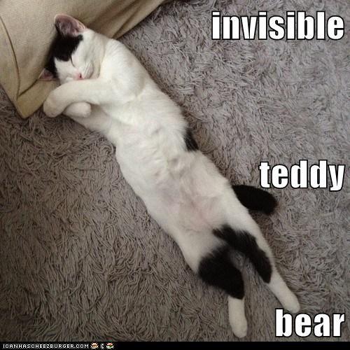 Teddy Bear Memes