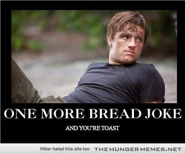 Best 25 Hunger Games Memes Hunger Games Funny Memes Hunger