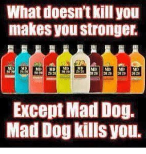 Mad Dog Ulang Tahun By Pringgor Meme Center