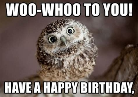 Happy Birthday Owl Memes