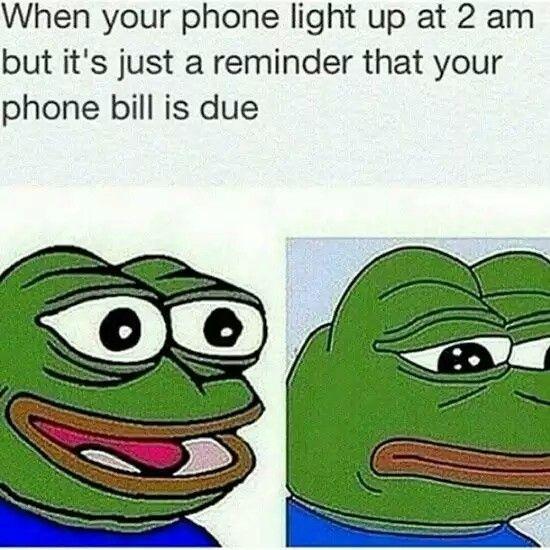 Frog Memes