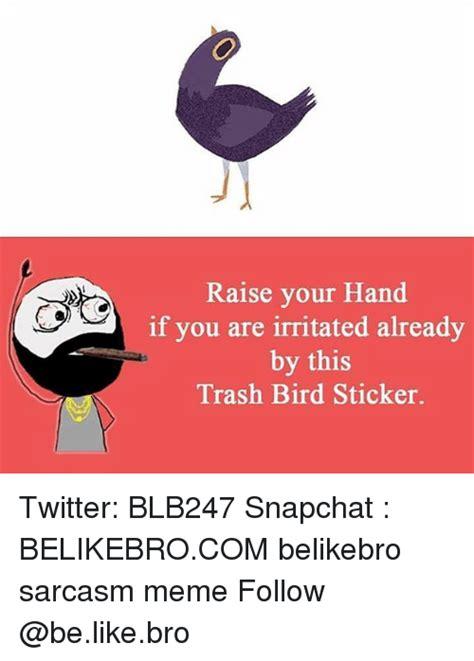 Trash Bird Memes