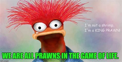 Pepe The King Prawn Memes