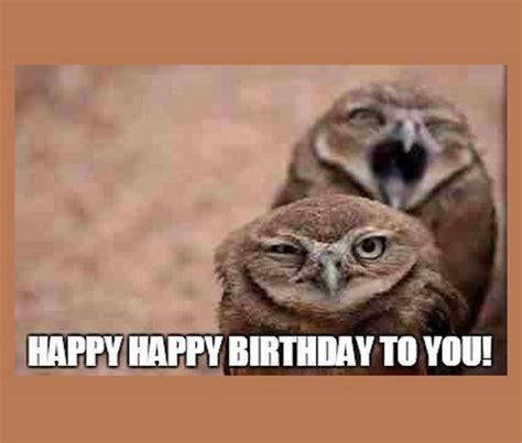 Owl Birthday Memes