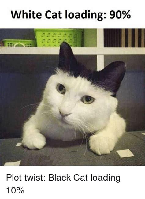 White Cat Memes