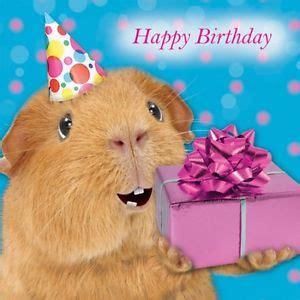 Happy Birthday Pig Memes