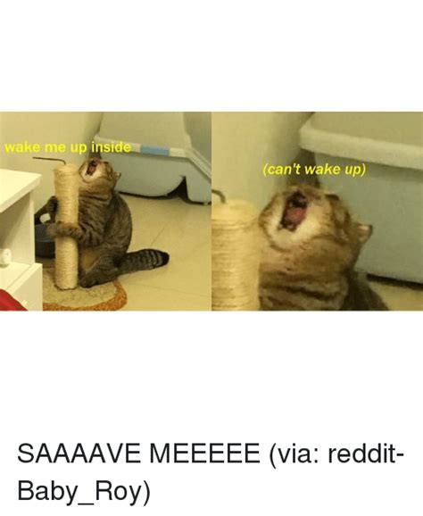 Wake Me Up Memes