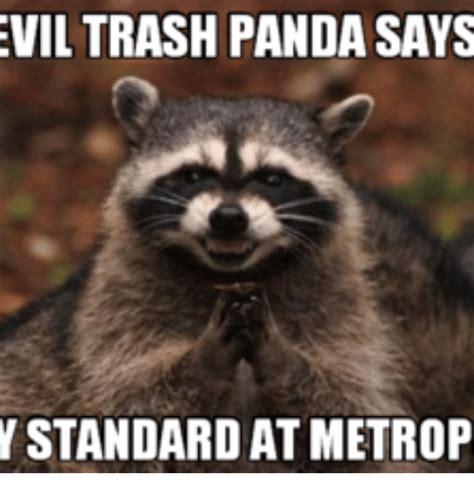 Trash Panda Memes