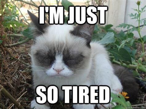 I M Sleepy Memes
