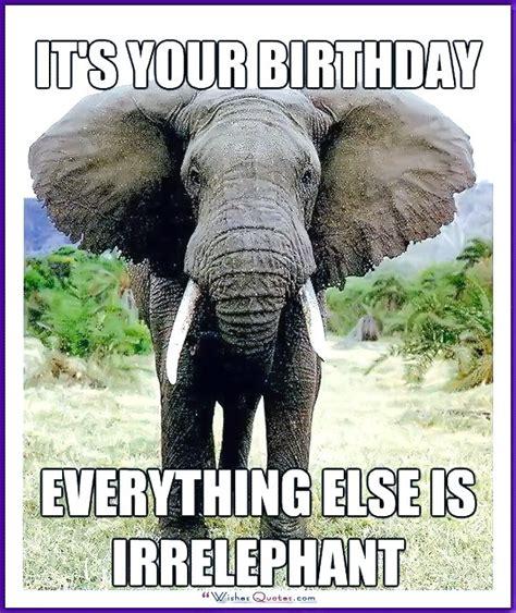 Animal Birthday Memes