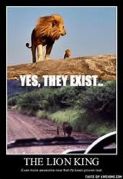 Lions Male And Cub 08 End Trophy Hunting Now