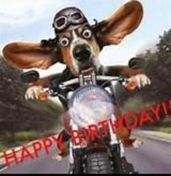 Happy Birthday Biker Memes