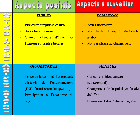 Memoire Online Fiscalit Et Choix De Gestion Rojo