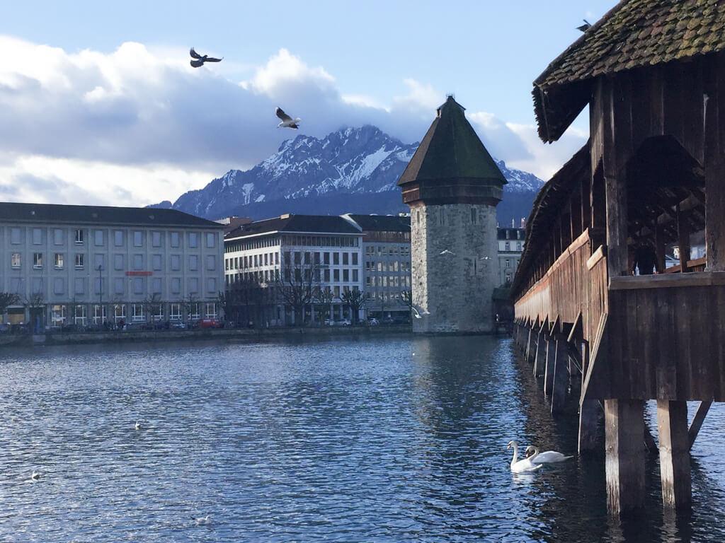 Birds fly in the sky near Chapel Bridge, Lucerne