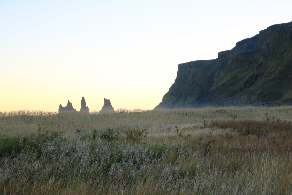 A field near Reynisfjara beach in Vik, Iceland.