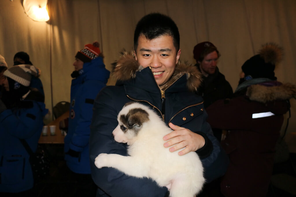 A cuddly puppy in Aurora Village, Yellowknife, Canada