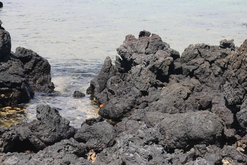 Black volcanic lava rocks at Las Tintoreras, Isabela Island, Galapagos