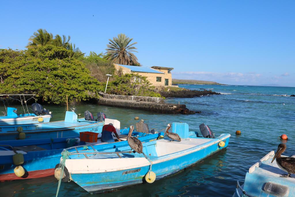Puerto Ayora fishing boats on Santa Cruz island, Galapagos