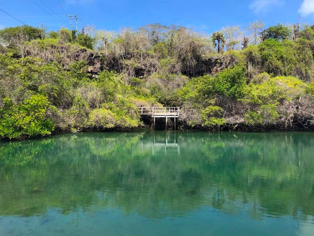 Laguna de las Ninfas is a peaceful lagoon surrounded by mangroves in Puerto Ayora on Santa Cruz Island in the Galapagos