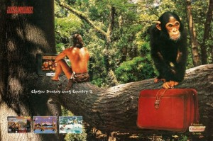 Donkey Kong Country 3 Playtronic
