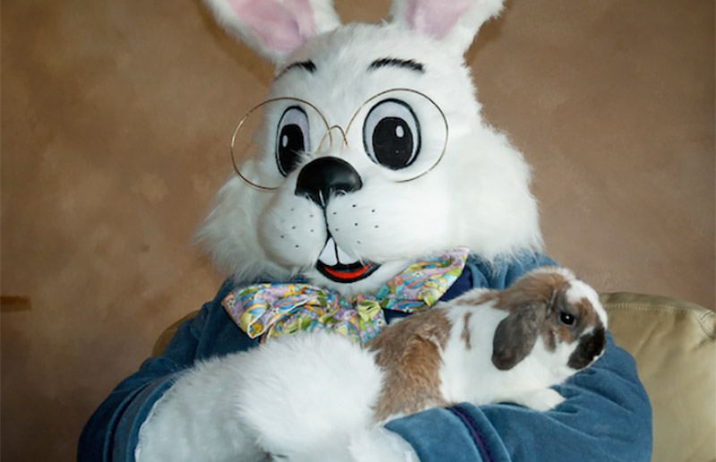 Image result for easter bunny with dog