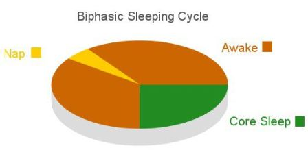 Biphasic Sleep - Get the best out of your sleeping hours