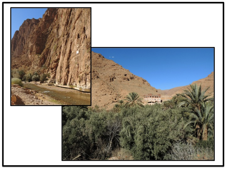 We finally executed Todra Gorge, and reentered Tinghir and the oasis.  At this point we were starting to think about lunch,