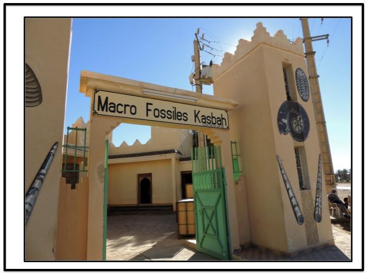 Macro Fossiles Kasbah is located in