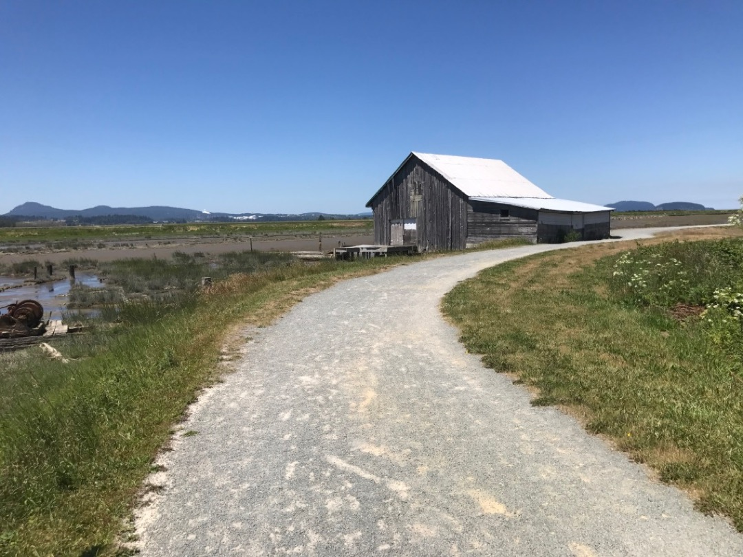 Padilla Bay Trail