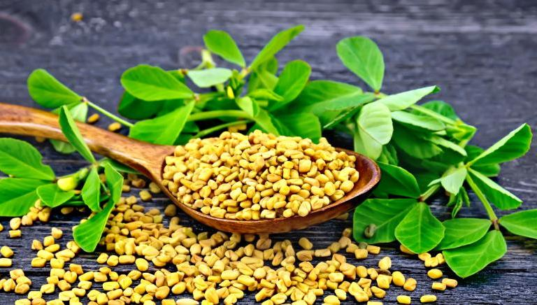 Reasons Why Methi Should be an Essential Part of Your Diet