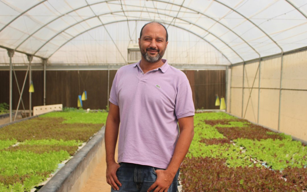 Egypt's young entrepreneurs moving into new food production systems