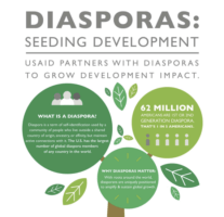 Developing Countries and their Diaspora facing up the World