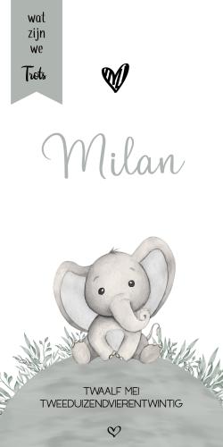 Geboortekaartje wereldbol met olifantje