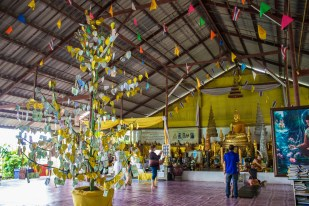 Money filled with donations towards the buddha