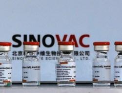 WHO Keluarkan Izin Penggunaan Darurat Vaksin Sinovac