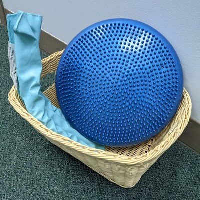 blue wiggle cushion