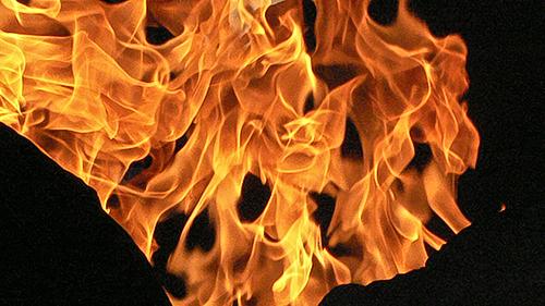 Flame On © lynette sheppard
