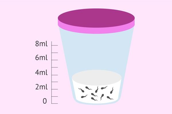 ¿Es importante el volumen de semen para la fertilidad?