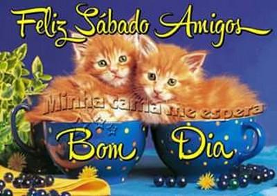 bom dia feliz sábado meus amigos queridos