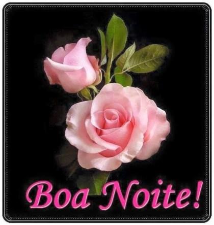 mensagem de boa noite com rosa