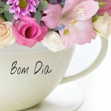 bom dia maravilhoso para voces meus amigos