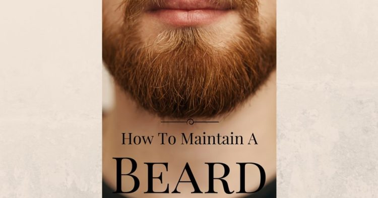 how to maintain a beard the guy s grooming guide