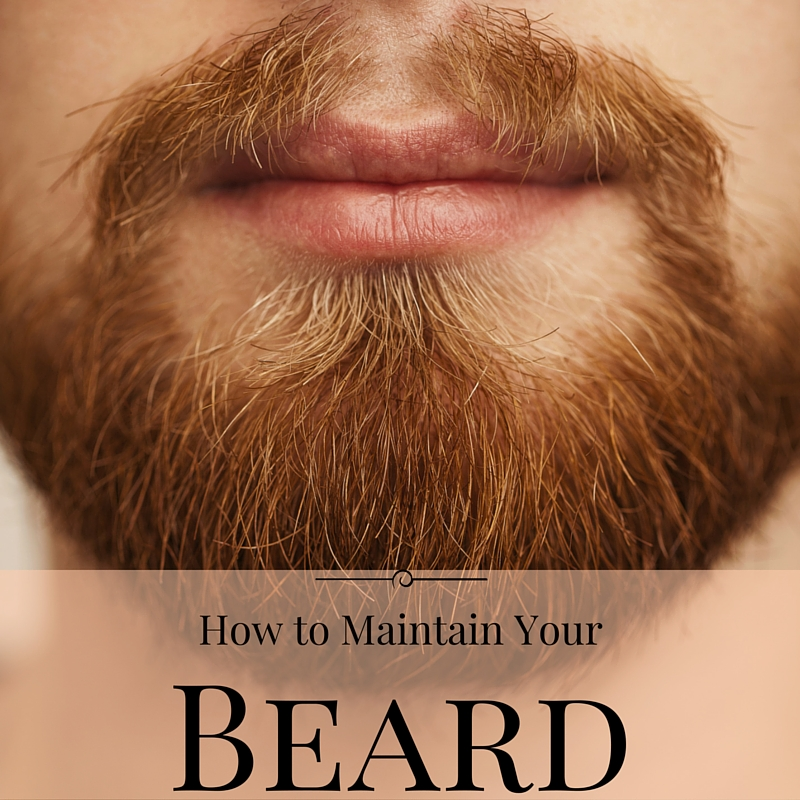 How to maintain a beard the guys grooming guide how to maintain a beard urmus Images