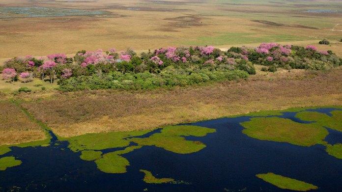 Iberá National Park / Tompkins Conservation
