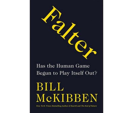 Bill Mckibben Book
